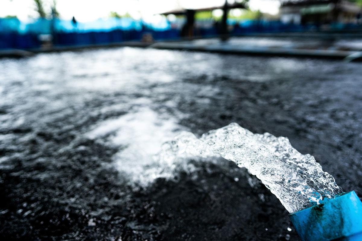 Waterinfiltratie